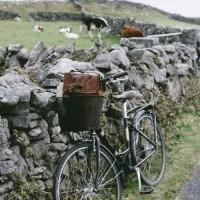 Theme Ride Thursday: Lucky You! Saint Patrick's Day Playlist & Profiles