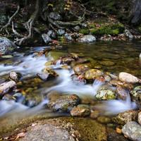 Quick Profile: Ebb and Flow, A Tempo Ride