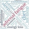 What is Adrenal Fatigue Syndrome?