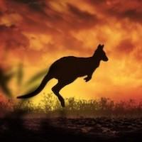 Australia Tribute Profile